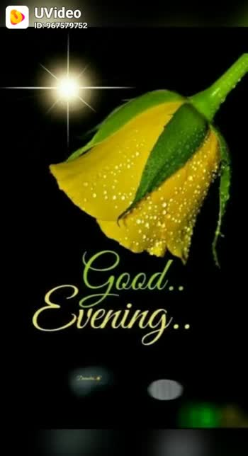 good evening - UVideo ID : 967579752 Good . . Evening . . UVideo ID : 967579752 God bless your evening Keep . Peace in . your heart - ShareChat