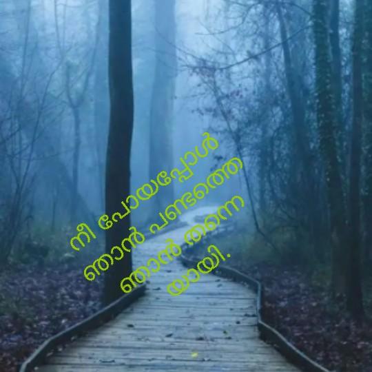 💌 പ്രണയം - നീ പോയപ്പോ ഞാൻ പണ്ടത്ത വന്ന യി . - ShareChat