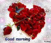 🌞সুপ্রভাত - Good morning PicMix - ShareChat
