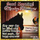🌅 સુપ્રભાત 🙏 - DRAMA Good Morning ! Monday Blessings ! May your day be filled within positive thoughts . kind people , and happy moments ! Hoping you ' re blessed today ! The Horse Mafia PicMix - ShareChat