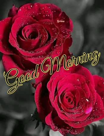 🌅శుభోదయం - Srinu Morning Good Srinu Morning Good - ShareChat