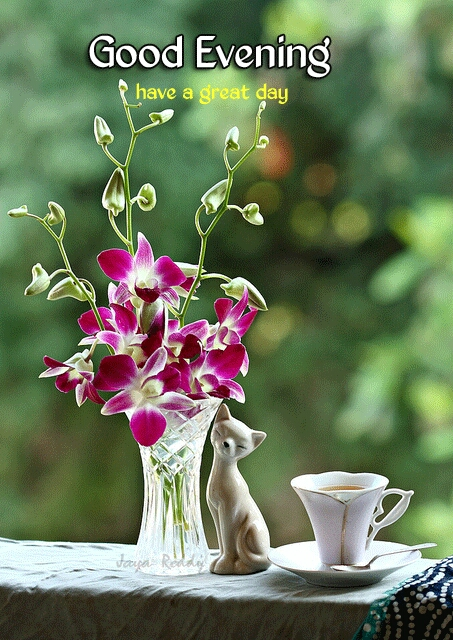 शुभ संध्या शुभेच्छा - go od Evening have a great dau - ShareChat