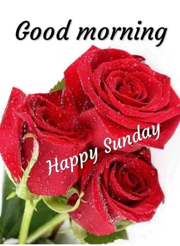 🌞সুপ্রভাত - Good morning Happy Sunday - ShareChat