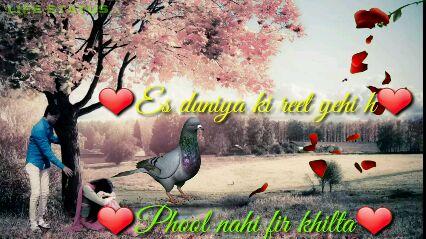ভারত বন্ধ - LIFE STARS pyar baline wale dekhe ♡ cuan ke kane puan - ShareChat