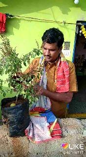 ரபேல் ஒப்பந்தத்தில் அம்பானி குழுமத்தை சேர்த்தது மோடி அரசுதான்-பிரான்ஸ் முன்னாள் அதிபர் - LIKE @ 661167  - ShareChat