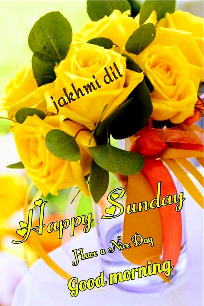 💖 यश ग्रुप 💖- 🌹🙏सुप्रभात 🙏🌹 - jakhmi dil Sundau Dhanmu Sunday Hue a Ne Day Good morning - ShareChat