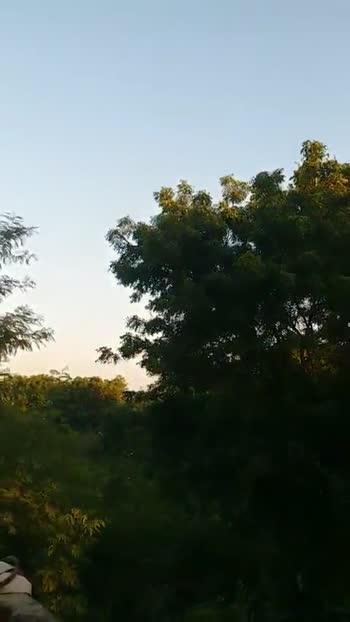 🌾 મારાં ખેતરનાં વિડિઓ 🌾 - ShareChat