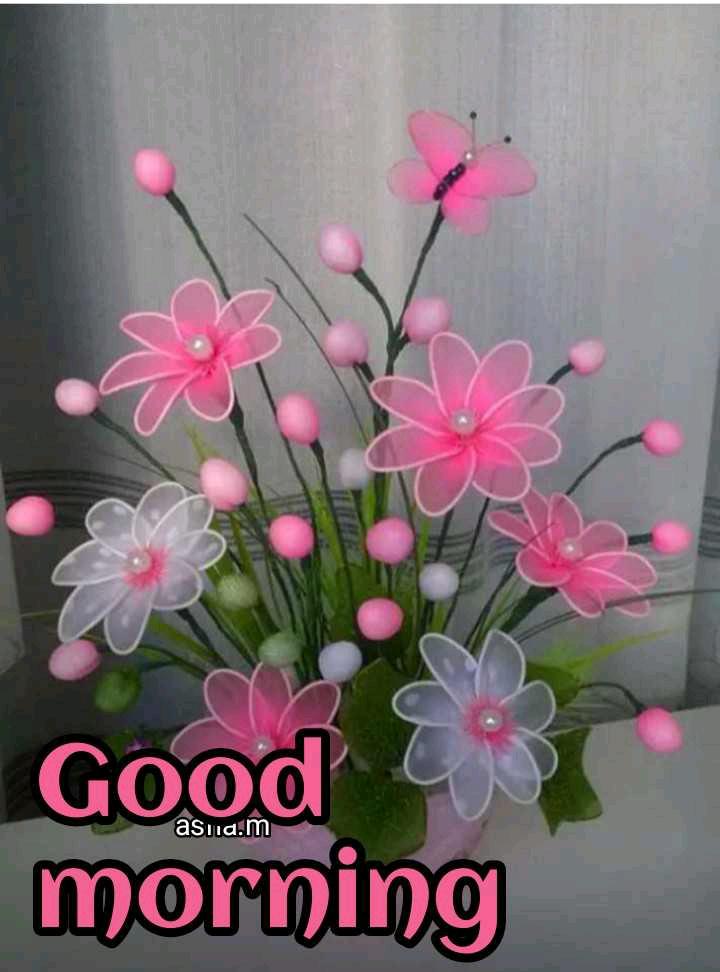 🌅ಶುಭೋದಯ - asia . m Good morning - ShareChat