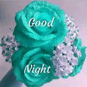 good ni8 - Good Night Good Night - ShareChat
