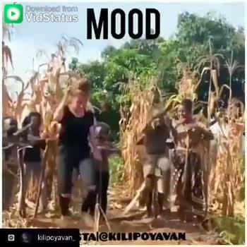 remix songs - Download from MOOD o kilipoyavan _ TAI @ KILIPOYAVAN O Download from MOOD o kilipoyavan . TAI @ KILIPOYAVAN - ShareChat