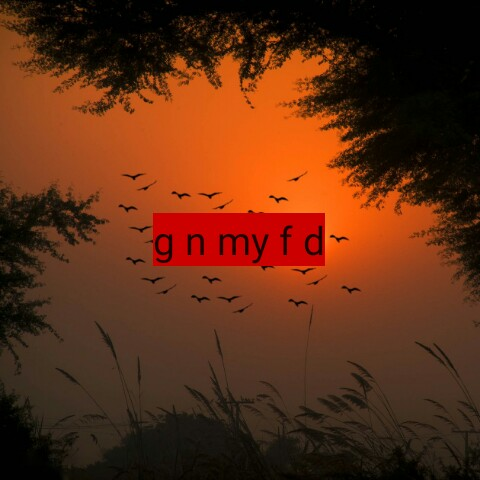 g .k - g n my fd - ShareChat