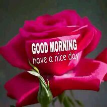 good  morning - GOODMORNING . - ShareChat