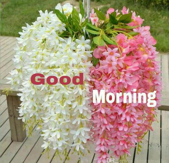 శుభోదయం - Good Morning - ShareChat