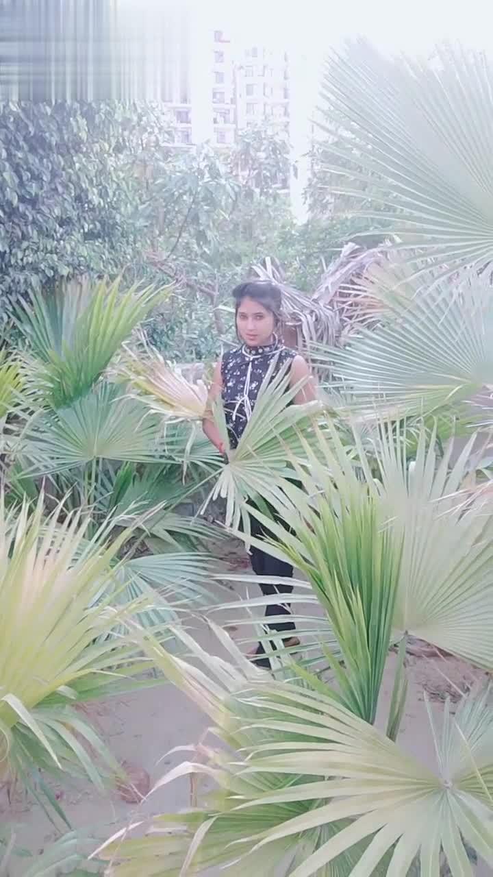 Jhansi Ki Rani - V VMate ID : 70865488 V VMate ID : 70865488 - ShareChat