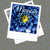 good morning 😊 - ShareChat