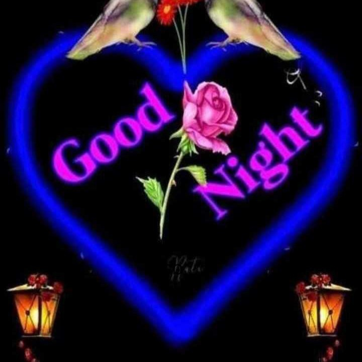 good night - Good Right ' - ShareChat