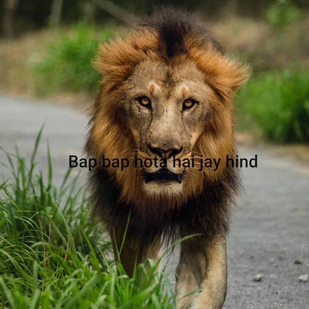 💪हाऊ इज द जोश - Bap bap hota hai jay hind - ShareChat