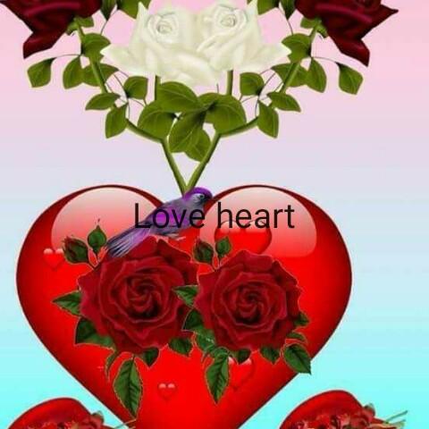 😍 awww... 🥰😘❤️ - Love heart - ShareChat