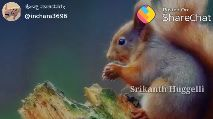 snehaloka... - ಪೋಸ್ಟ್ ಮಾಡಿದವರು : @ inchara3696 Posted On : Sharechat ಹೃದಯ 21 ಭಾವನೆ . 100 Srikanth Huggelli ಪೋಸ್ಟ್ ಮಾಡಿದವರು ; @ inchara3696 Posted On : ShareChat - Best ಫ್ರೆಂಡ್ 1 ಅದು ನೀವೇ . . . Srikanth Huggelli - ShareChat