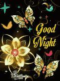 🌃 ഗുഡ് നൈറ്റ് - Good Night Smut Creation scant - ShareChat