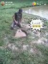 ફની વિડિઓ - पोस्ट करने वाले : @ 58329806 | Posted On ShareChat - ShareChat