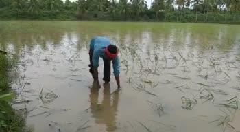 వర్ష కాలం - ShareChat