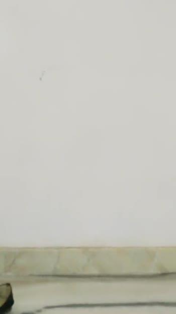 दिवार का वीडियो चैलेंज😃 - ShareChat