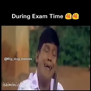 exam preparation comedy - During Exam Time 00 @ Big _ dog _ memes # My Phone isaimini . com During Exam Time 00 @ Big _ dog _ memes # My Phone isaimini . com - ShareChat