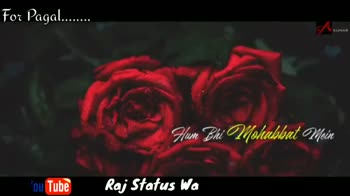 💖miss💖 - For Pagal . . . . Kash dap You Tube Raj Status Wala Love For Pagal . . . . . . . YouTube Raj Status Wala Love - ShareChat