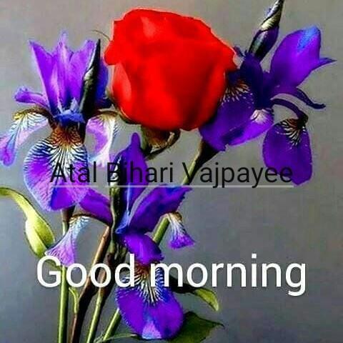 💐સહજાનંદ સરસ્વતી જયંતિ - Atal Bihari Vajpayee Good morning - ShareChat
