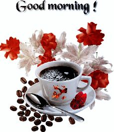 🌞Good Morning🌞 - Good morning : - ShareChat