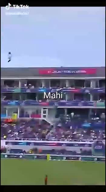 world cup 2019 🏏 - ShareChat