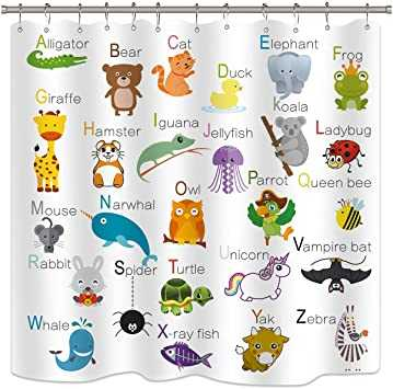 🍎 ABCD - Alligator Bear Cat Elephant Duck Duck Giraffe Koala Ladybug Hamster Iguana 400 J Mouse Narwhal Parrot Queen bee 2 Vampire bat Unicorre Rabbit - Spider Turtle Whale all Yak Zebra X - ray fish - ShareChat