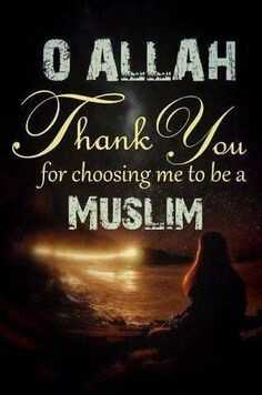 Alhamdulillah🌹 - O ALLAH Thank You for choosing me to be a MUSLIM ou - ShareChat