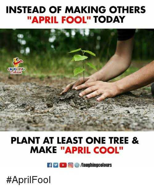 🤣 April cool - INSTEAD OF MAKING OTHERS APRIL FOOL TODAY LAUGHING barat PLANT AT LEAST ONE TREE & MAKE APRIL COOL F O / laughingcolours # April Fool - ShareChat