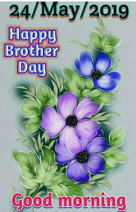Brother's Day - 24 / May / 2019 Happy Brother Day Good morning - ShareChat