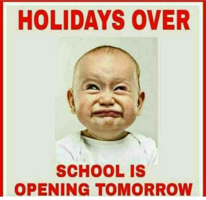 👋🏻Bye-bye जून🙁 - HOLIDAYS OVER SCHOOL IS OPENING TOMORROW - ShareChat