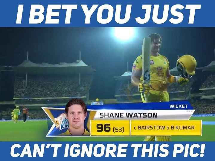 CSK vs SRH - I BET YOU JUST WICKET SHANE WATSON 96 ( 53 ) C BAIRSTOW b B KUMAR CAN ' T IGNORE THIS PIC ! - ShareChat