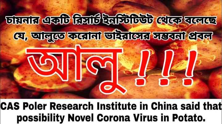 Corona Virus -   চায়নার একটি চিঠিইটটিউট থেবড়েছে যে , আলুতেকরােনা ভাইরাজারছনা প্রবল জল   CAS Poler Research Institute in China said that possibility Novel Corona Virus in Potato . - ShareChat