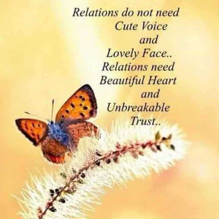 Did you know❓ - Relations do not need Cute Voice and Lovely Face . . Relations need Beautiful Heart and Unbreakable Trust . . - ShareChat