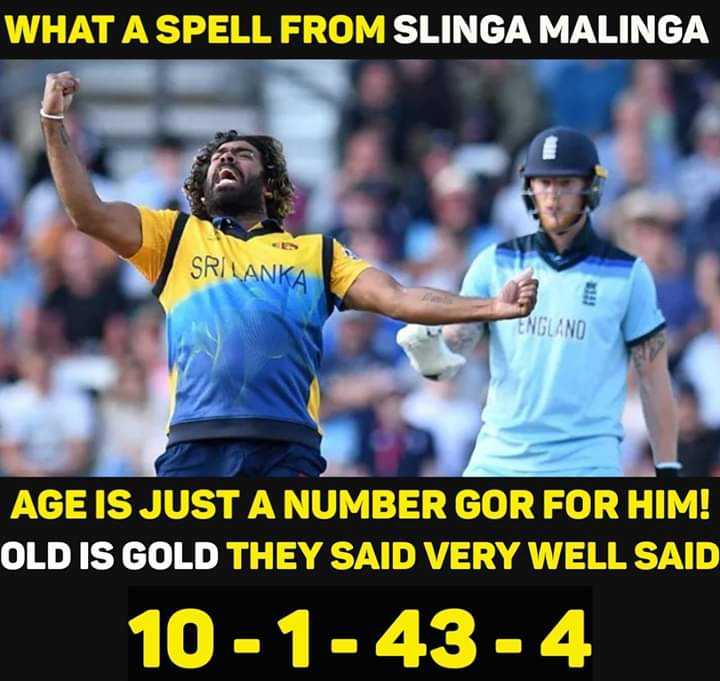 🏏ENG vs SL - WHAT A SPELL FROM SLINGA MALINGA SRI LAN IFER ENGLAND AGE IS JUST A NUMBER GOR FOR HIM ! OLD IS GOLD THEY SAID VERY WELL SAID 10 - 1 - 43 - 4 - ShareChat
