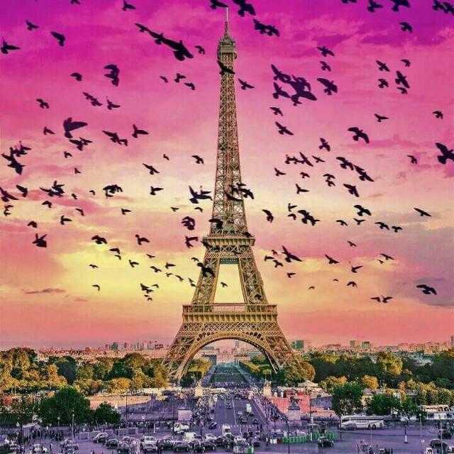 Eiffel - ShareChat
