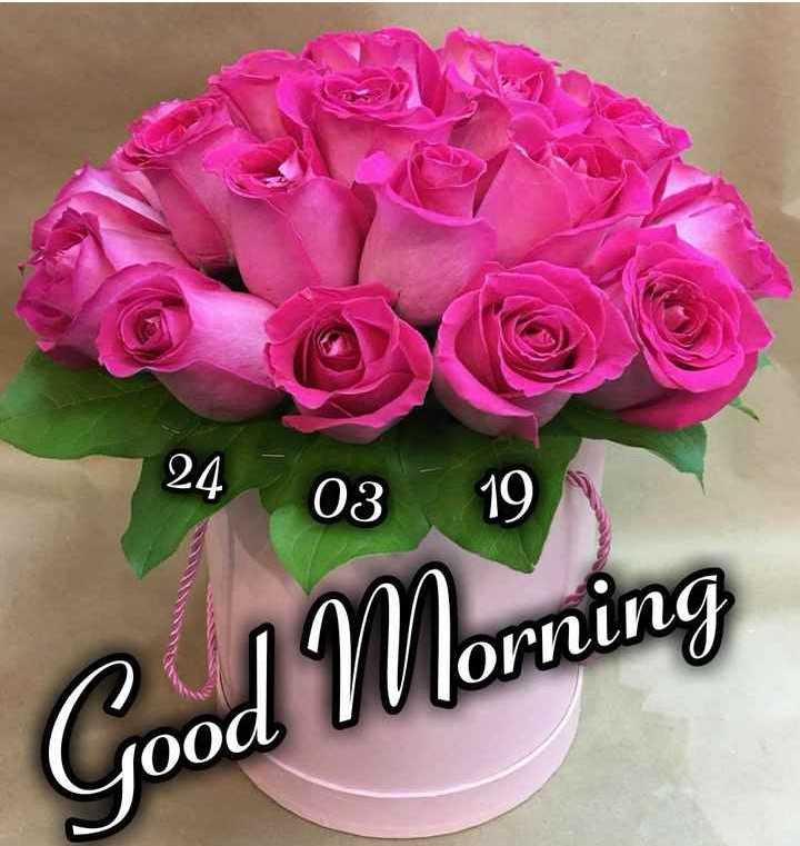 💐Flower photography - 24 03 19 ОСпLпо Good Morning 10oa - ShareChat