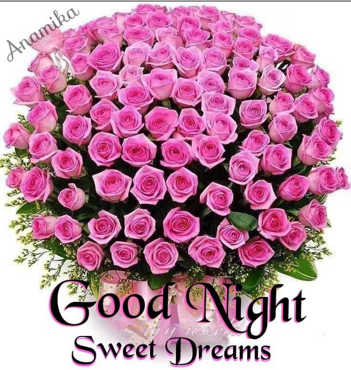 💐Flower photography - Anamika Good Night Sweet Dreams - ShareChat