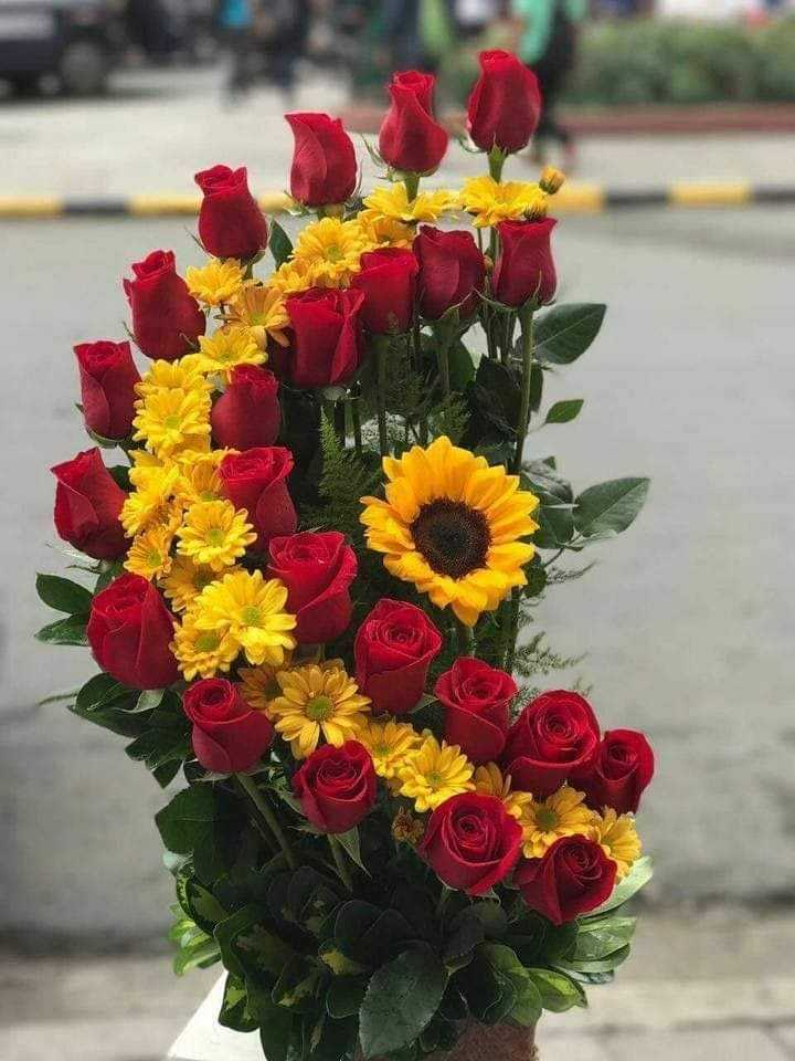 🌻Flowers - ShareChat