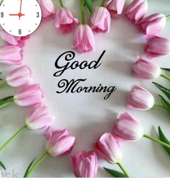 🍏Fruits - 9 - 3 Good Morning - ShareChat
