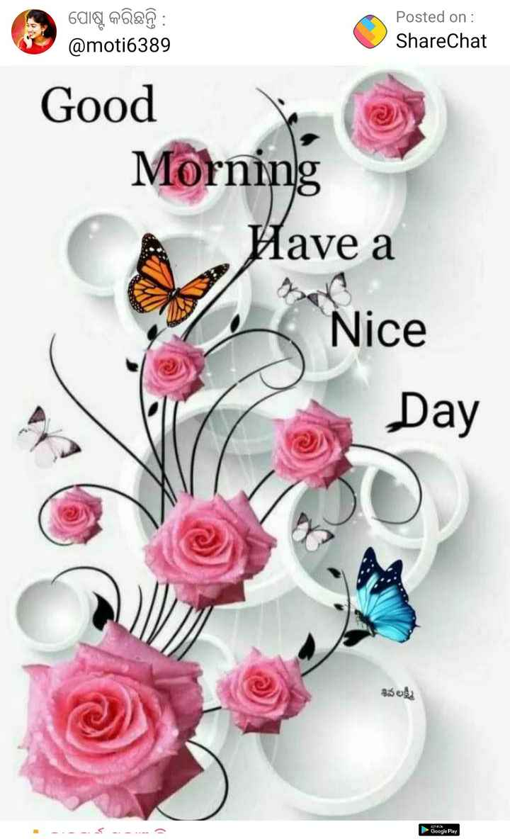 🤭GIF - ପୋଷ୍ଟ କରିଛନ୍ତି : @ moti6389 Posted on : ShareChat Good Morning Have a Have a Nice Day శివలక్ష్మి Google Play - ShareChat