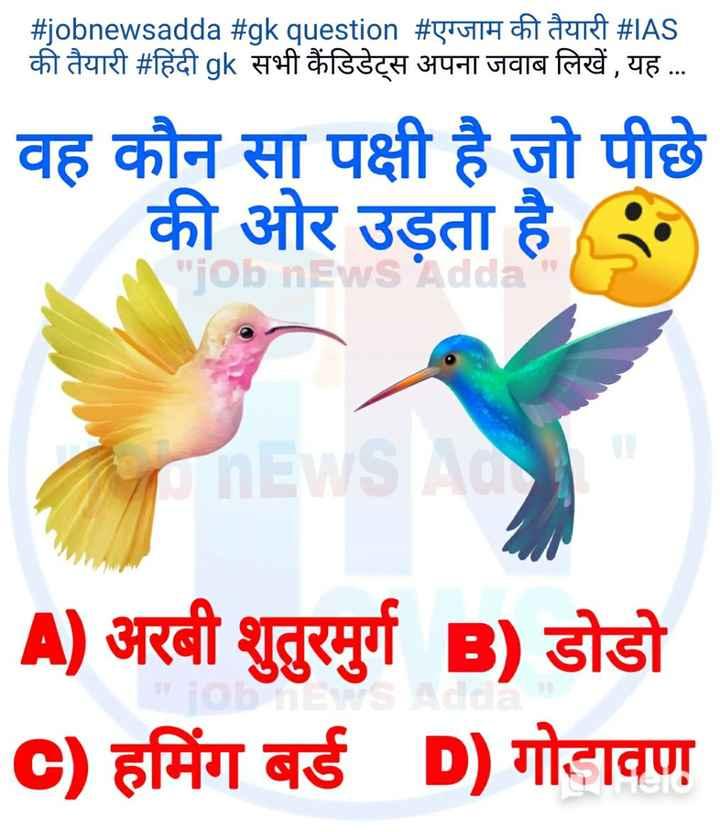 📰GK & करेंट अफेयर्स💡 - # jobnewsadda # gk question # एग्जाम की तैयारी # IAS की तैयारी # हिंदी gk सभी कैंडिडेट्स अपना जवाब लिखें , यह . . . वह कौन सा पक्षी है जो पीछे की ओर उड़ता है . TObnEW A ) अरबी शुतुरमुर्ग B ) डोडो C ) हमिंग बर्ड D ) गोडावण - ShareChat