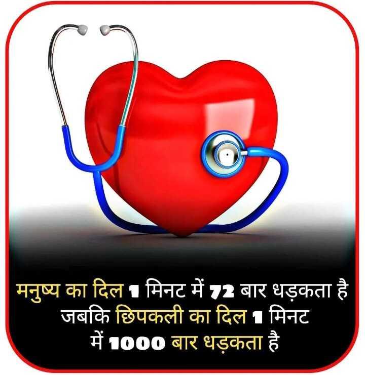 📰GK & करेंट अफेयर्स💡 - मनुष्य का दिल 1 मिनट में 2 बार धड़कता है । जबकि छिपकली का दिल 1 मिनट में 1000 बार धड़कता है । - ShareChat