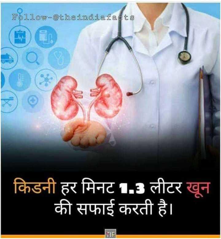 📰GK & करेंट अफेयर्स💡 - Follow - @ theindiafacts किडनी हर मिनट 1 . 3 लीटर खून की सफाई करती है । TE - ShareChat